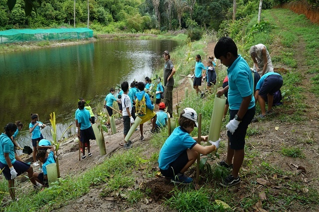 Seychellois school children propagating native trees to help counter climate change effects
