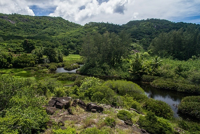 3 wetlands that protect -- and showcase -- Seychelles' unique biodiversity