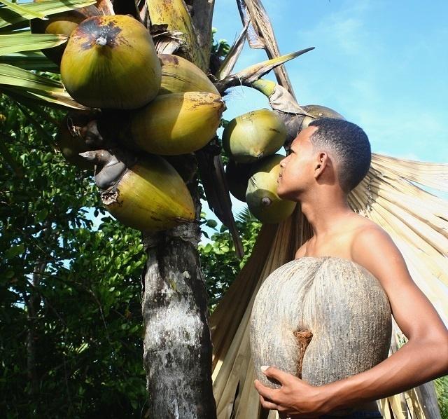 L'UNESCO aide les Seychelles à protéger leurs biens culturels contre la traite