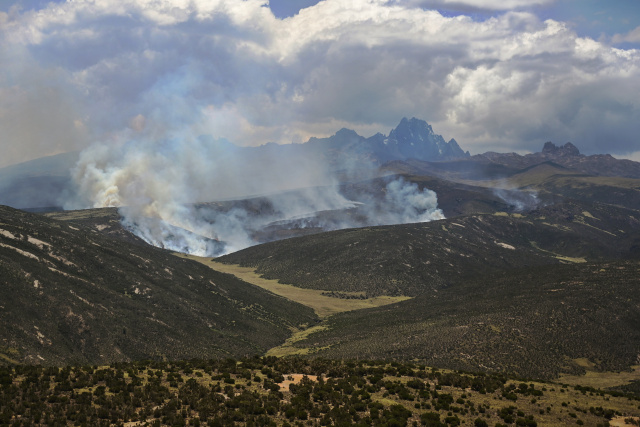African forest fires in spotlight after Amazon outcry
