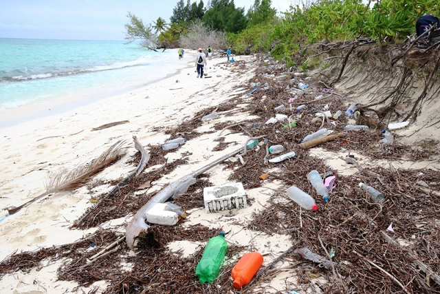 Seychelles' environmental officers study litter's sources, pathways and impacts on marine life