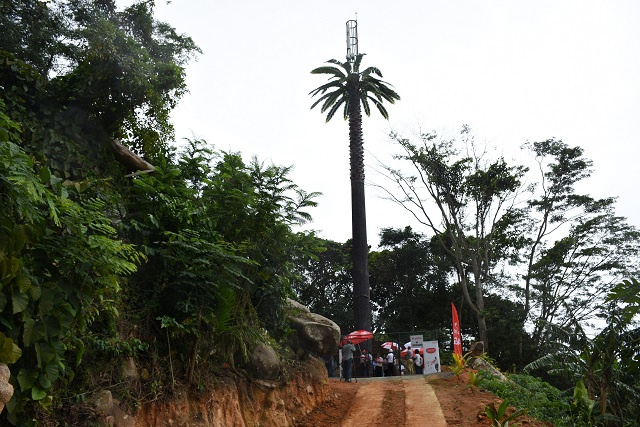New mobile phone tower in Seychelles is meant to blend in to tropical surroundings
