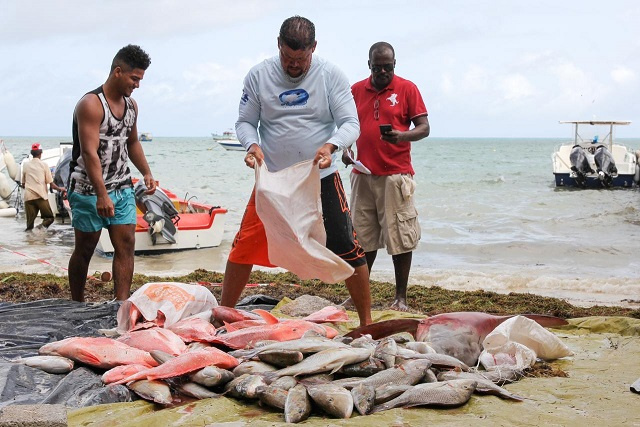 Fishermen on Seychellois island voluntarily close down fishing zones in a bid to protect stock