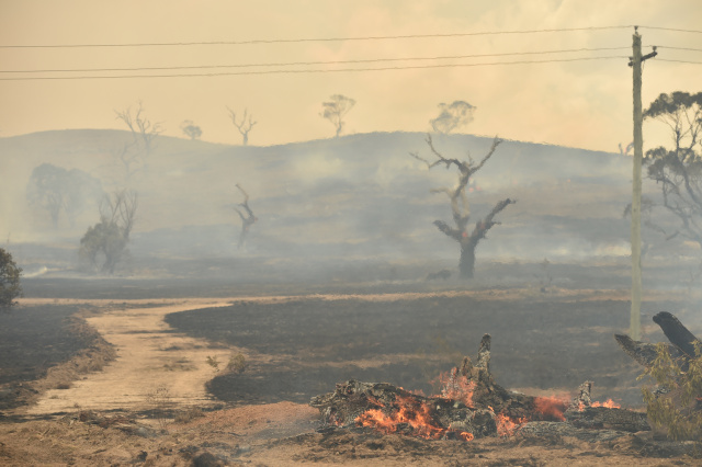 Downpours to end Australia bushfires within days
