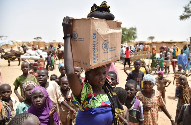 Niger stampede kills 20 at handout for refugees