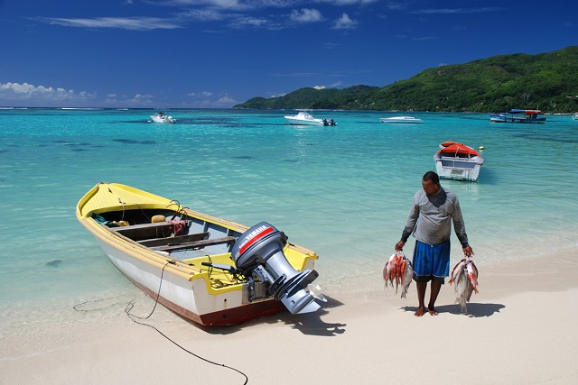 Seychelles to guarantee market for fishermen, to help ensure food supply, official says