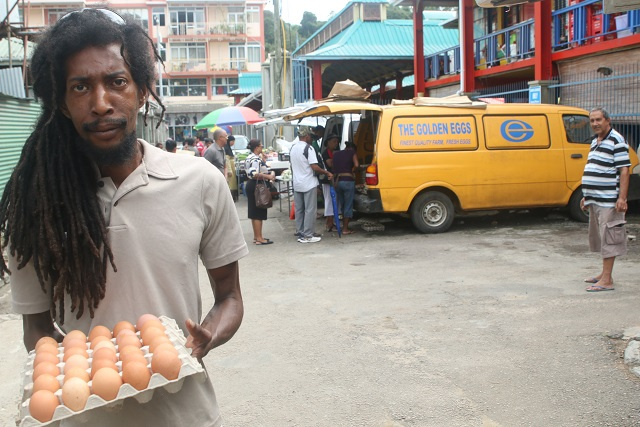 With no omelette-eating tourists, poultry farmers in Seychelles struggle to sell eggs, keep hens