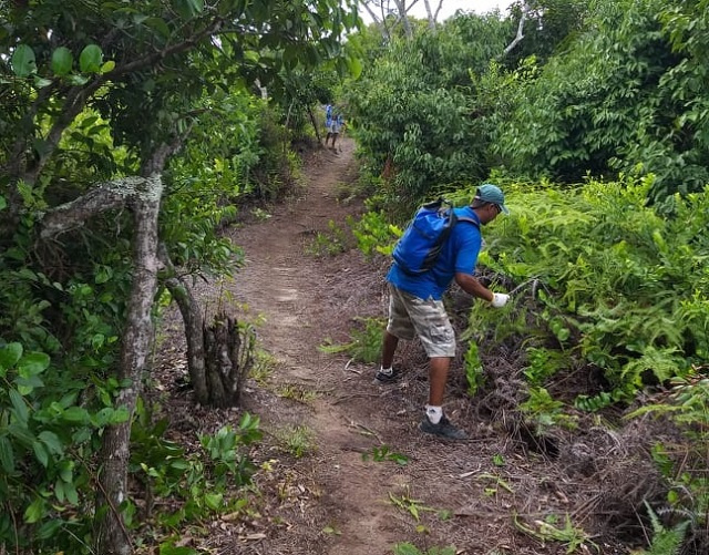 Seychelles National Parks staff clear nature trails during tourism low point