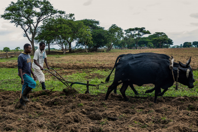 Zimbabwe signs US$3.5 bn compensation deal with white farmers
