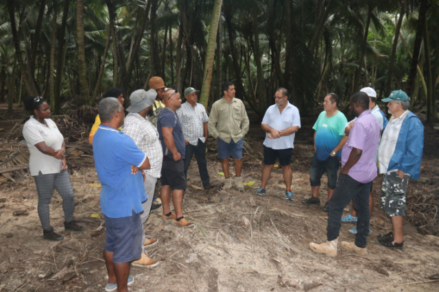 Farmers in Seychelles asked to develop large-scale farming on outer islands