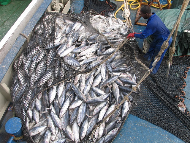 6,600 tonnes of catch brought $13 million into Seychelles' economy in 2019