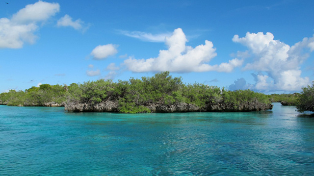 Seychelles' Aldabra Atoll to be part of study to protect World Heritage Sites from invasive species