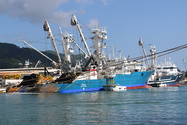 8 of 13 Seychelles' tuna fishing vessels grounded until 2021 after reaching yearly quota