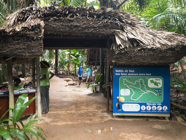 Seychelles' Vallee de Mai reserve sees 97 pct drop in visitors, loss of $2 million in revenue