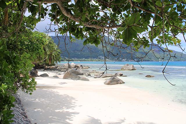 Les Seychelles rouvrent aux touristes ayant reçu le vaccin COVID-19