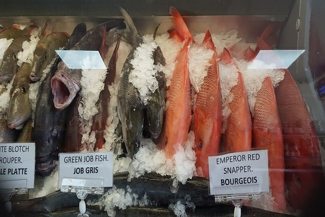 Fish export business in Seychelles being squeezed by pandemic's effects