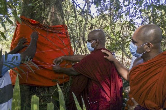 Sri Lankan monks 'ordain' last legume