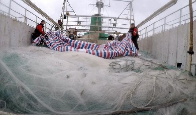 Les Seychelles demandent plus de soutien pour amener les pêcheurs à cesser d'utiliser les filets dérivants interdits