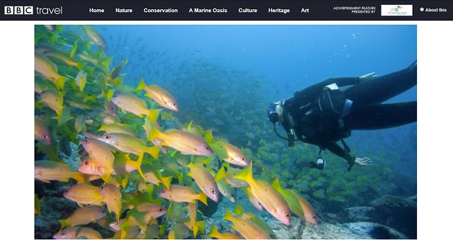 Treasures of Seychelles campaign being shared by BBC Travel, island nation's tourism board