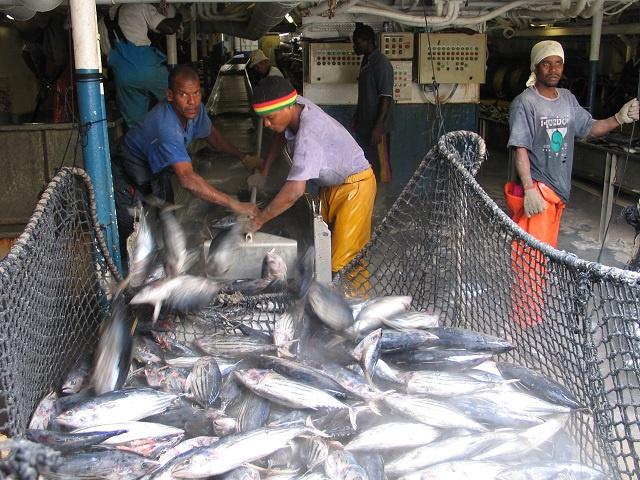 Les Seychelles poussent pour une conclusion avec l'UE des indemnités pour les marins seychellois