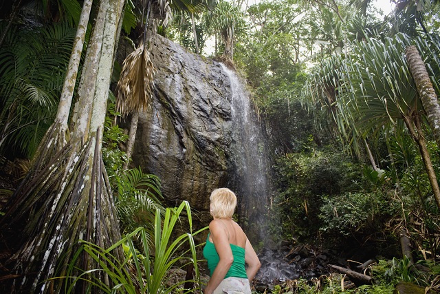Seychelles' Vallee de Mai reopens after 3-month COVID closure