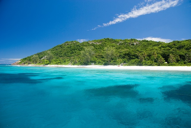 After spike in poaching, efforts to protect seabirds on Seychelles' Aride island are increased