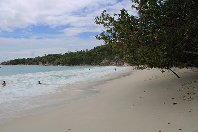 3 800 visiteurs arrivent aux Seychelles, une semaine après la relance du tourisme