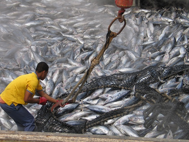 Seychelles Minister for Fisheries disappointed EU hasn't yet paid compensation to seafarers