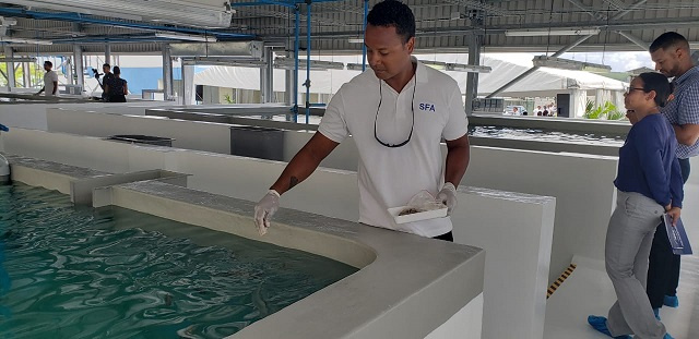 Aquaculture industry, delayed by COVID, to come online in Seychelles later this year