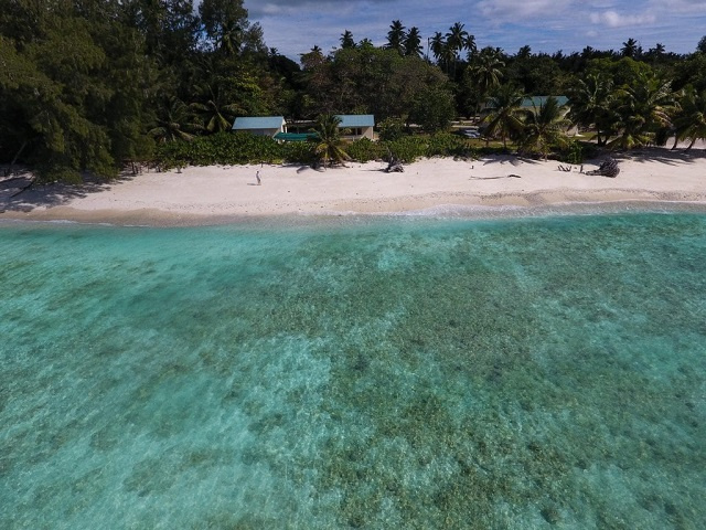 5 cool ways Save Our Seas is protecting marine life in Seychelles