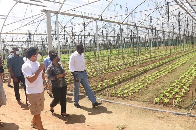 121 travailleurs bangladais arrivent aux Seychelles pour stimuler le secteur agricole