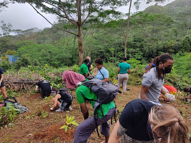 British High Commission plants trees ahead of larger Green Footprint Seychelles campaign