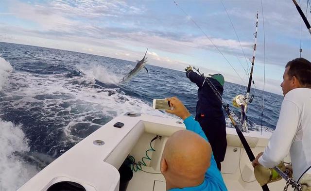 Seychelles Sports Fishing Club hosting yellowfin tuna tournament Saturday