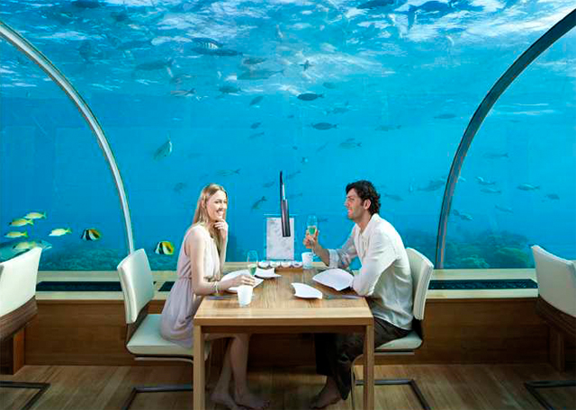 Dinner for two under the sea the underwater restaurant for Hotel conrad restaurante bajo el mar